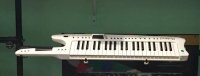 Click for large photo of Roland AX-7