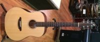 Click for large photo of Breedlove Passport D20
