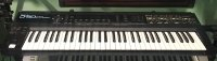 Click for large photo of Roland D-50