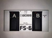 Click for large photo of Boss FS-6
