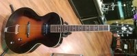 Click for large photo of Loar LH-309