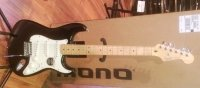 Click for large photo of Fender Strat
