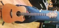 Click for large photo of Takamine NP15C