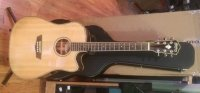 Click for large photo of Washburn WD25SCE