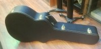 Click for large photo of  Acoustic Case