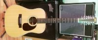 Click for large photo of Washburn D25 12 String