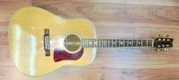 Click for large photo of Washburn D25