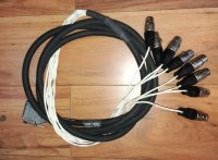Click for large photo of  DSub to Male XLR 8 Ch Snake