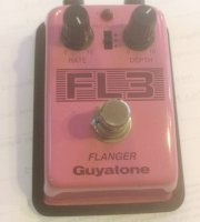 Click for large photo of Guyatone FL3