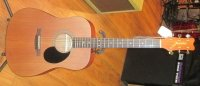 Click for large photo of Takamine Jasmine Acoustic (New)