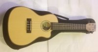 Click for large photo of Kala Travel Concert Cutaway Uke